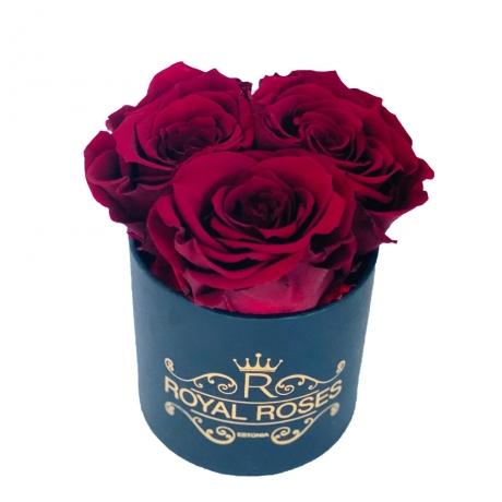 3- punast roosi MUSTAS karbis.jpg